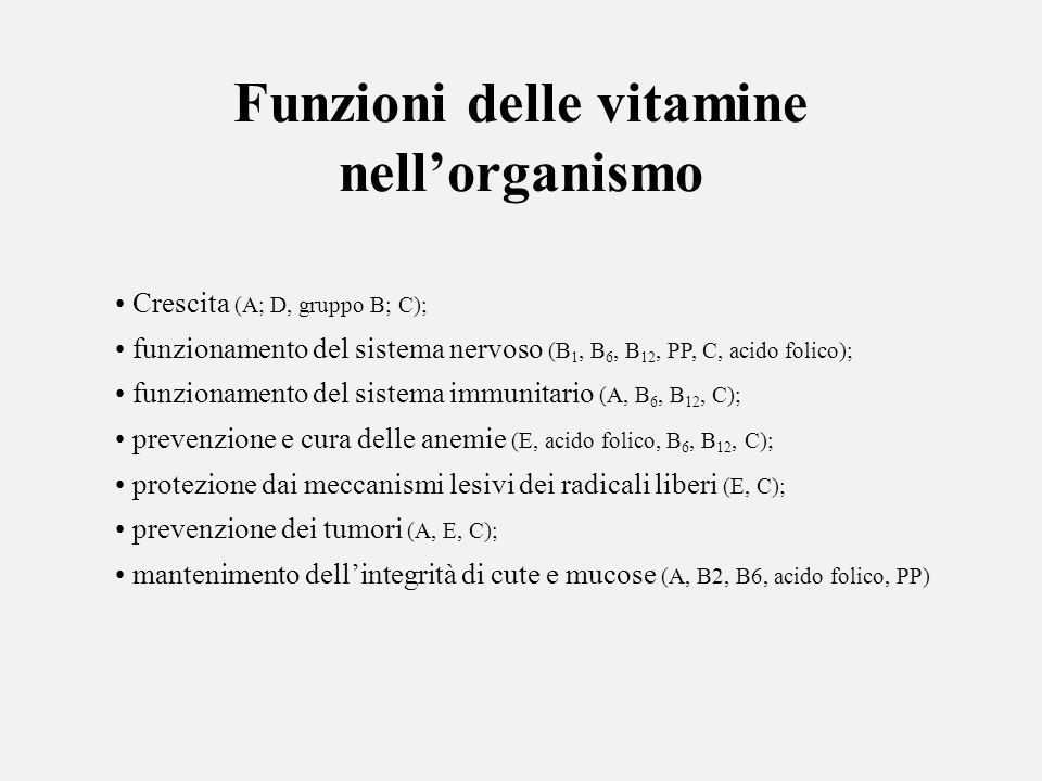 Funzioni delle vitamine nellorganismo Crescita (A; D, gruppo B; C); funzionamento del sistema nervoso (B 1, B 6, B 12, PP, C, acido folico); funzionam