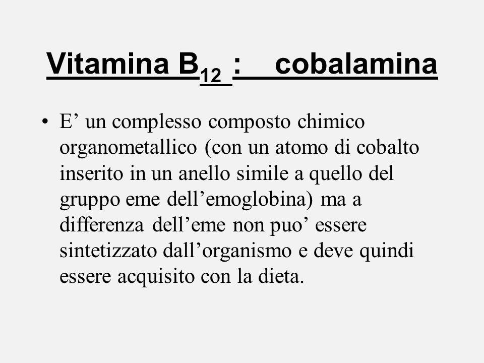 Vitamina B 12 : cobalamina E un complesso composto chimico organometallico (con un atomo di cobalto inserito in un anello simile a quello del gruppo e