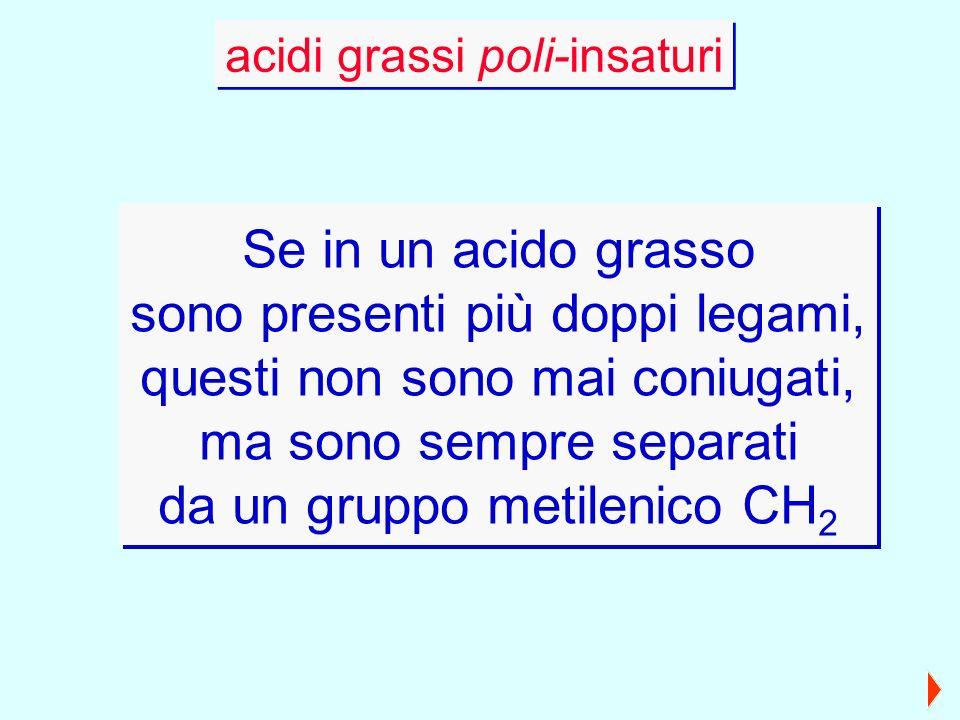 Se in un acido grasso sono presenti più doppi legami, questi non sono mai coniugati, ma sono sempre separati da un gruppo metilenico CH 2 Se in un aci