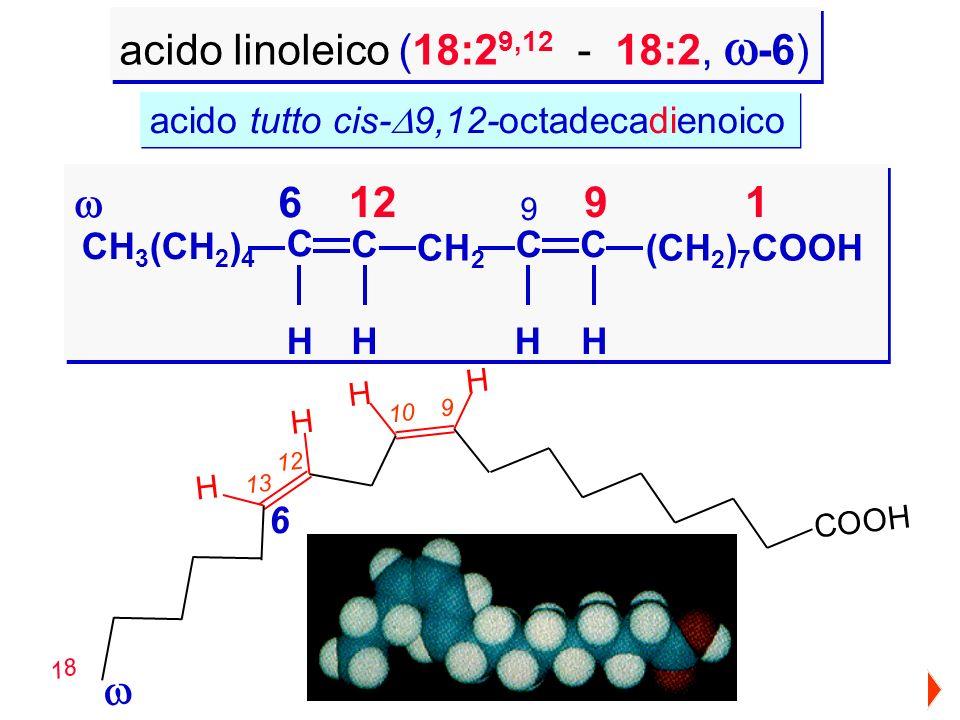 CH 3 (CH 2 ) 4 CH 2 C C CC HHH (CH 2 ) 7 COOH H 9121 acido linoleico (18:2 9,12 - 18:2, -6) 6 9 H H H H C O O H 9 10 13 12 18 6 acido tutto cis- 9,12-