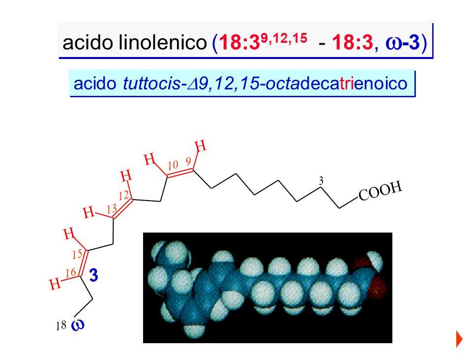 acido linolenico (18:3 9,12,15 - 18:3, -3) 3 910 13 12 15 16 18 HH H H H H COOH 3 acido tuttocis- 9,12,15-octadecatrienoico