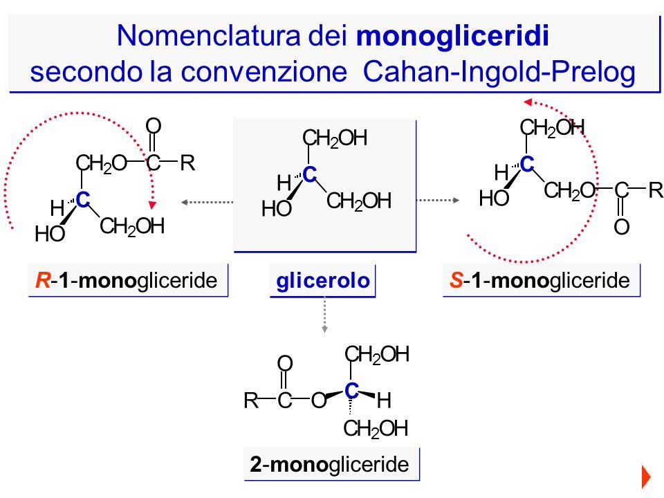 glicerolo R-1-monogliceride S-1-monogliceride 2-monogliceride C CH 2 O CH 2 OH HO H C O R C CH 2 OH CH 2 O HO H C O R C CH 2 OH CH 2 OH HO H C CH 2 OH
