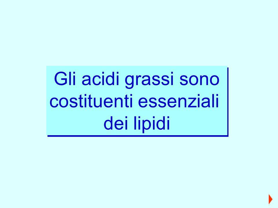 Gli acidi grassi sono costituenti essenziali dei lipidi Gli acidi grassi sono costituenti essenziali dei lipidi