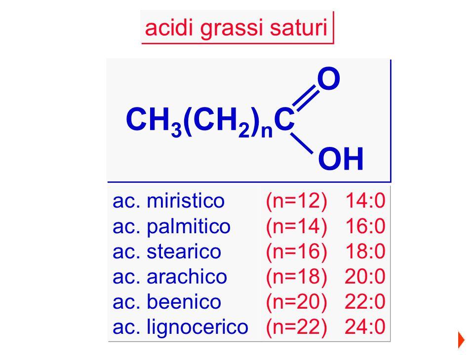 acidi grassi saturi CH 3 (CH 2 ) n C O OH ac. miristico ac. palmitico ac. stearico ac. arachico ac. beenico ac. lignocerico (n=12) 14:0 (n=14) 16:0 (n