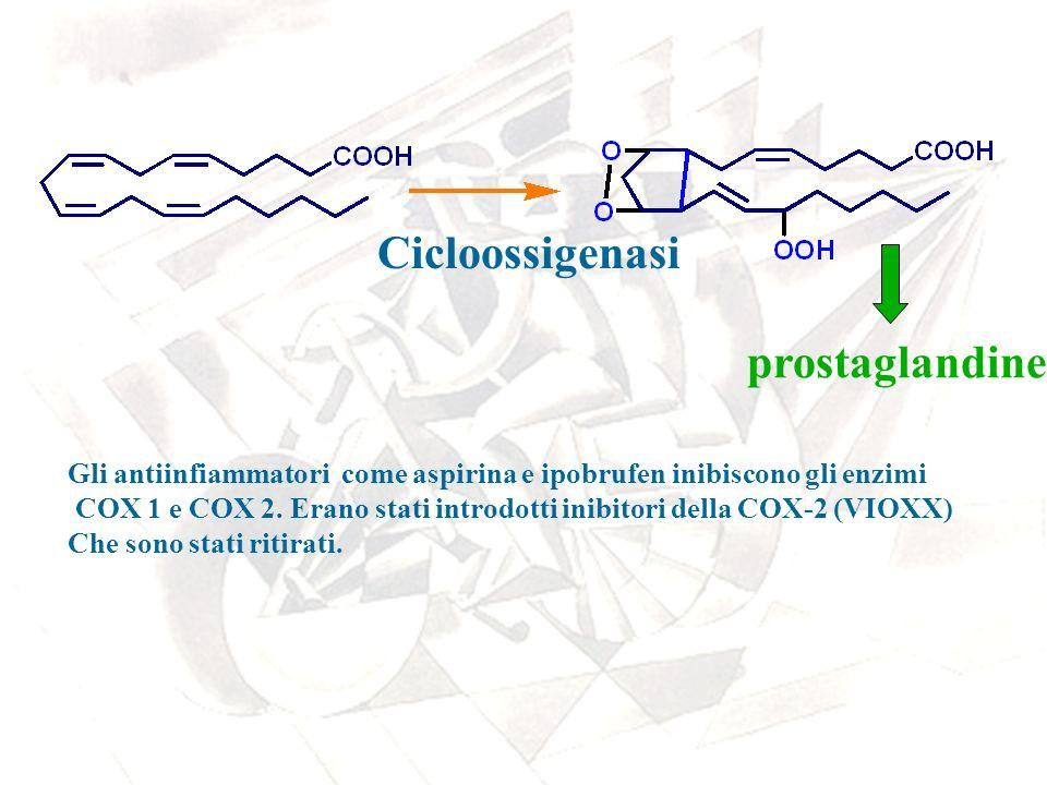 Cicloossigenasi prostaglandine Gli antiinfiammatori come aspirina e ipobrufen inibiscono gli enzimi COX 1 e COX 2. Erano stati introdotti inibitori de