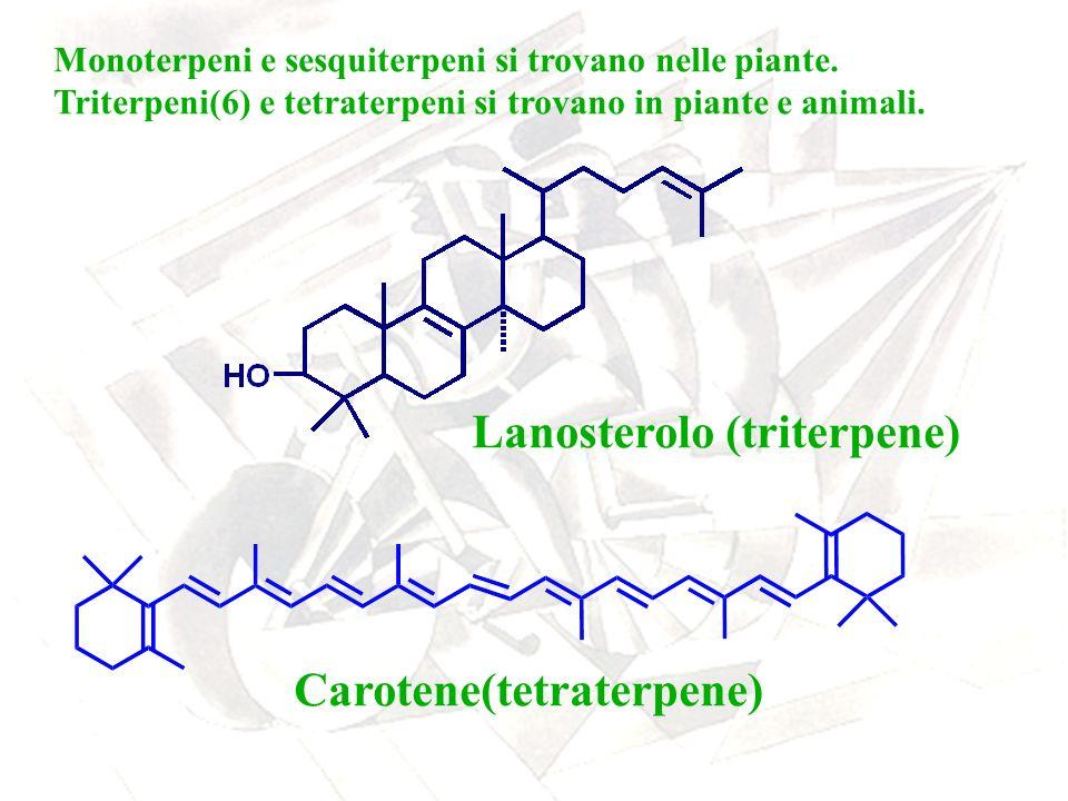 Monoterpeni e sesquiterpeni si trovano nelle piante. Triterpeni(6) e tetraterpeni si trovano in piante e animali. Lanosterolo (triterpene) Carotene(te