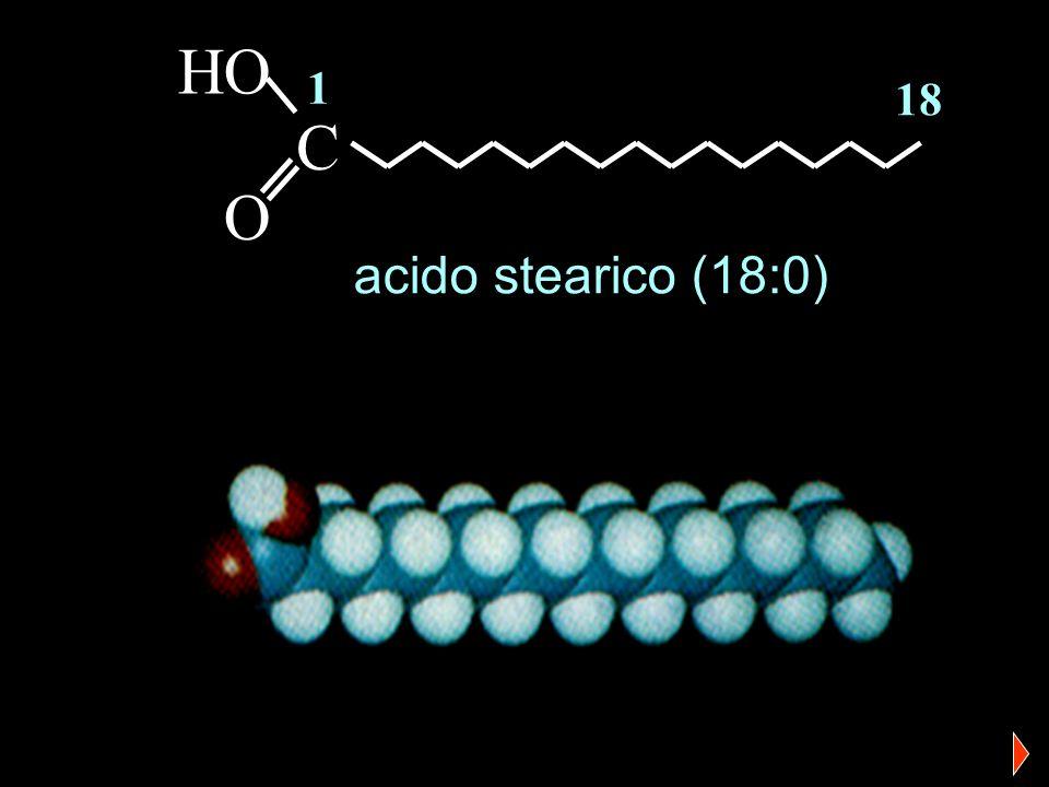 R-COOH + H 2 O R-COO - + H 3 O + gli acidi grassi sono acidi deboli 10 -4 > Ka < 10 -5