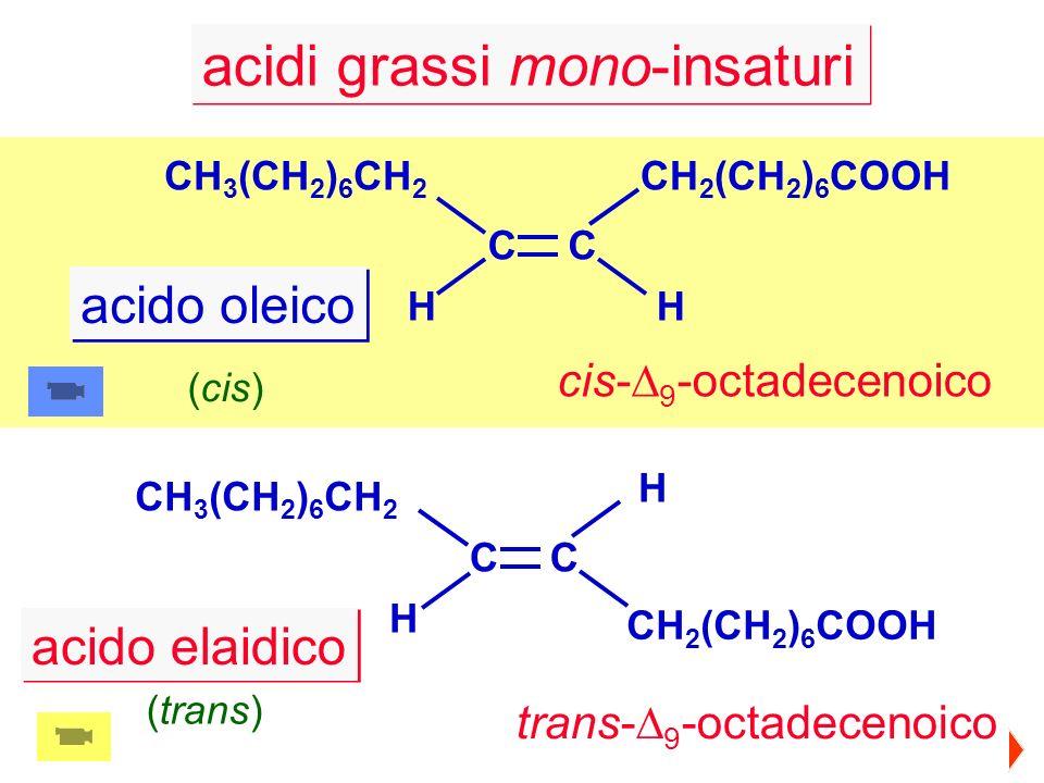 acidi grassi mono-insaturi CH 3 (CH 2 ) 6 CH 2 CH 2 (CH 2 ) 6 COOH CC HH acido oleico CH 3 (CH 2 ) 6 CH 2 CH 2 (CH 2 ) 6 COOH CC H H (trans) cis- 9 -o