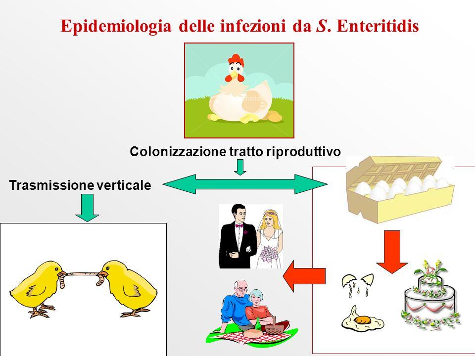 Epidemiologia delle infezioni da S.