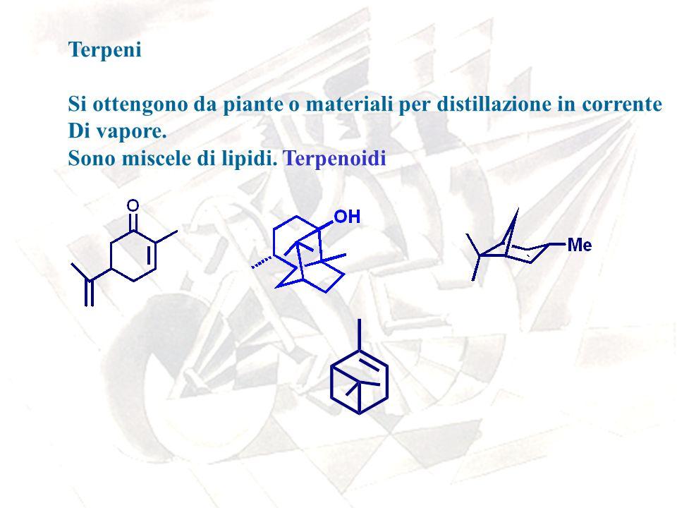Terpeni Si ottengono da piante o materiali per distillazione in corrente Di vapore. Sono miscele di lipidi. Terpenoidi