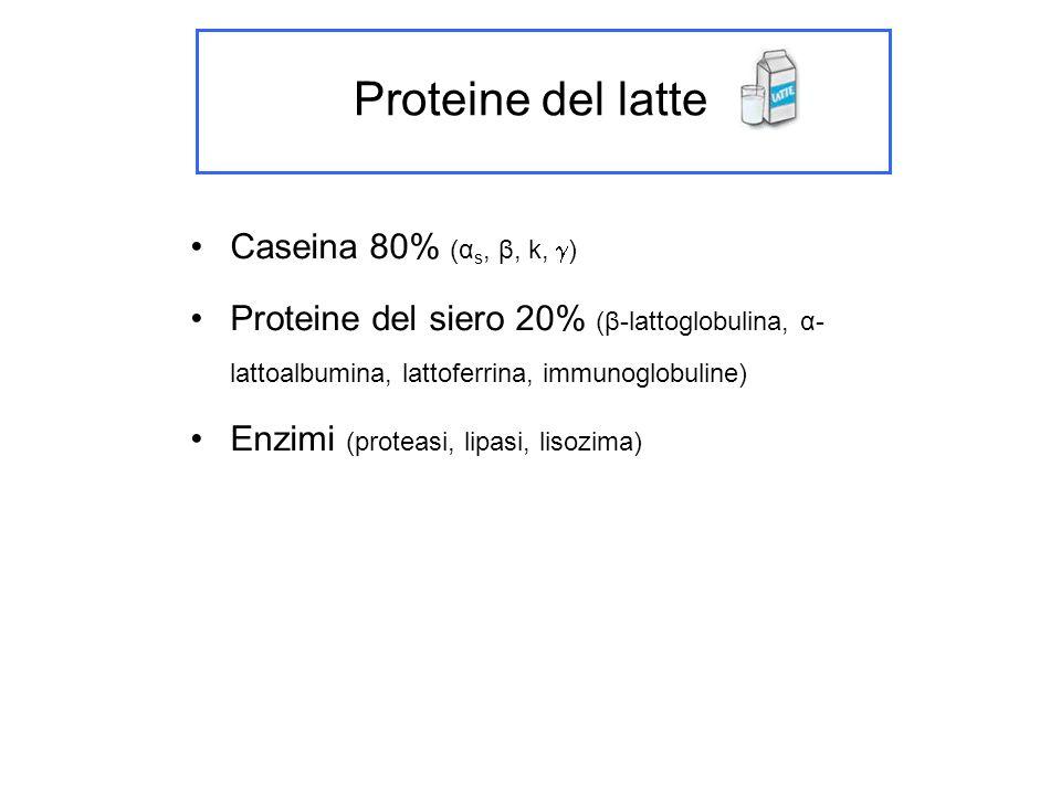 Grassi presenti nel latte Trigliceridi 98% Fosfolipidi 0.2 – 1 % Monogliceridi, digliceridi, cerebrosidi (tracce)