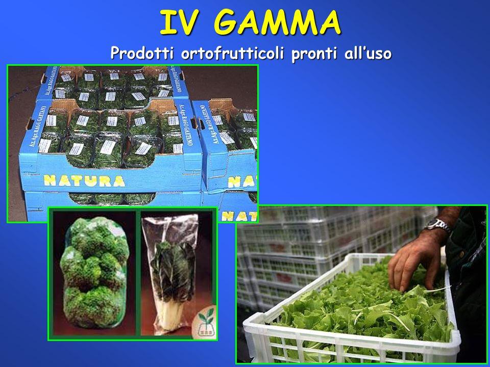 IV GAMMA Prodotti ortofrutticoli pronti alluso