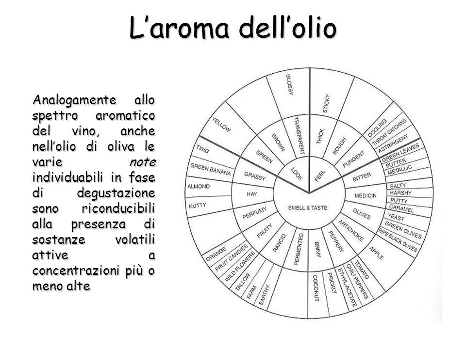 Laroma dellolio Analogamente allo spettro aromatico del vino, anche nellolio di oliva le varie note individuabili in fase di degustazione sono ricondu