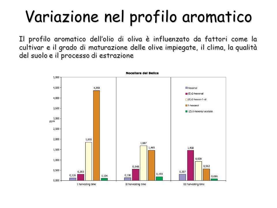 Variazione nel profilo aromatico Il profilo aromatico dellolio di oliva è influenzato da fattori come la cultivar e il grado di maturazione delle oliv