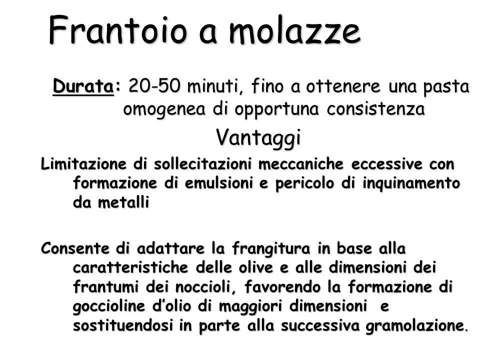 Frantoio a molazze Durata: 20-50 minuti, fino a ottenere una pasta omogenea di opportuna consistenza Durata: 20-50 minuti, fino a ottenere una pasta o