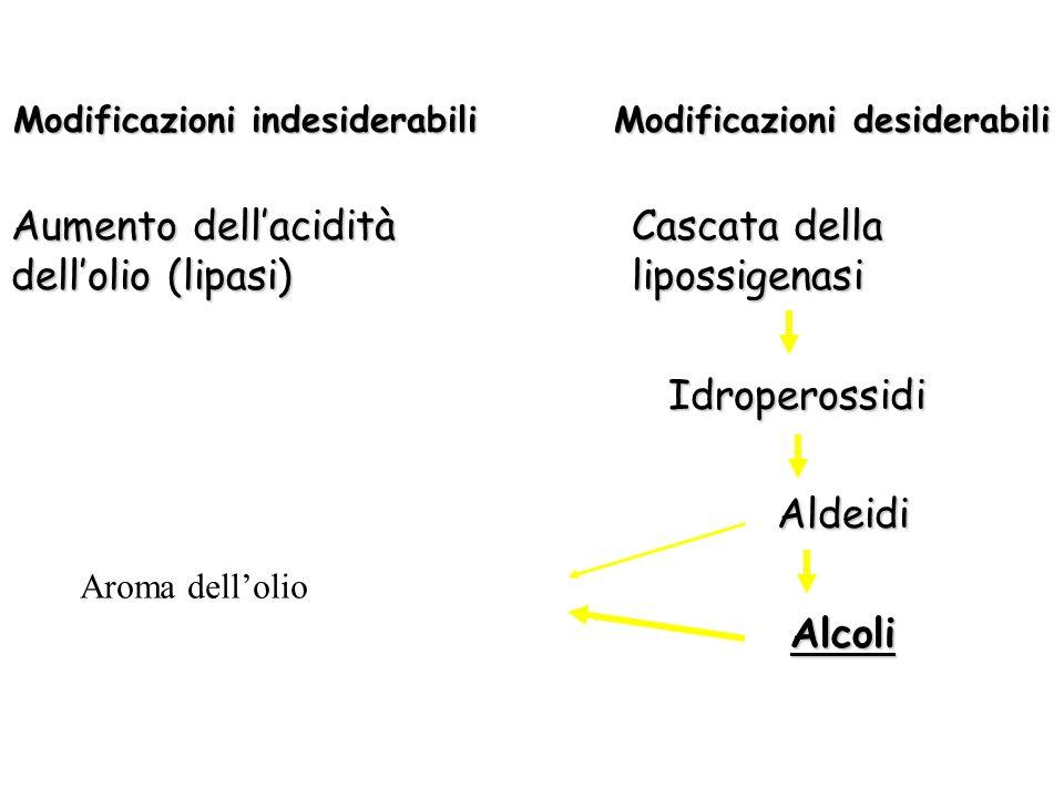 Modificazioni indesiderabili Modificazioni desiderabili Aumento dellacidità dellolio (lipasi) Cascata della lipossigenasi Idroperossidi Idroperossidi
