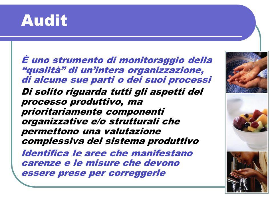Audit È uno strumento di monitoraggio della qualità di unintera organizzazione, di alcune sue parti o dei suoi processi Di solito riguarda tutti gli a