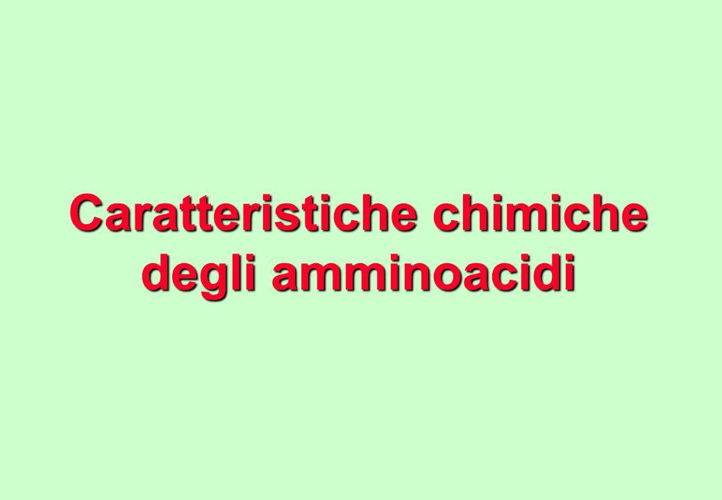 Caratteristiche chimiche degli amminoacidi