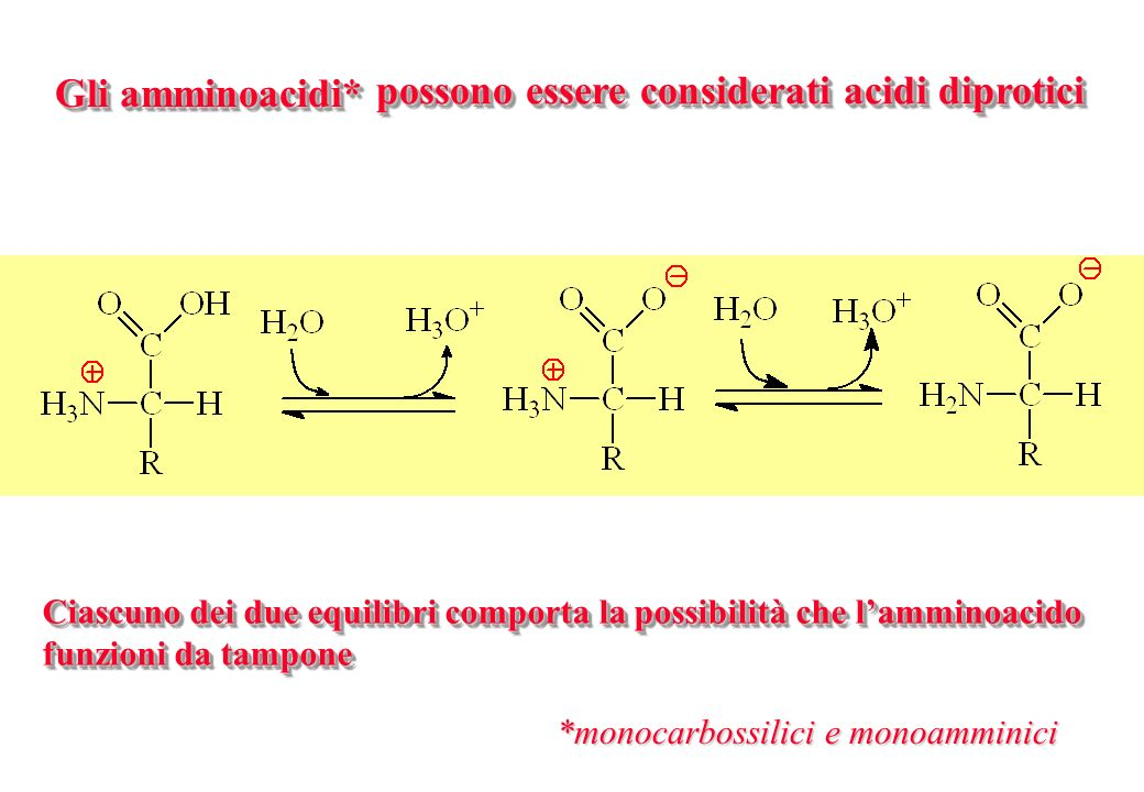 Gli amminoacidi* possono essere considerati acidi diprotici *monocarbossilici e monoamminici Ciascuno dei due equilibri comporta la possibilità che la