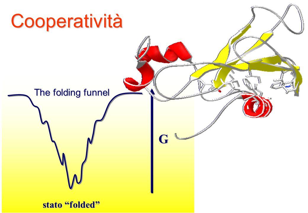 Cooperatività The folding funnel G stato folded