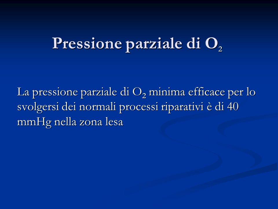 Pressione parziale di O 2 La pressione parziale di O 2 minima efficace per lo svolgersi dei normali processi riparativi è di 40 mmHg nella zona lesa