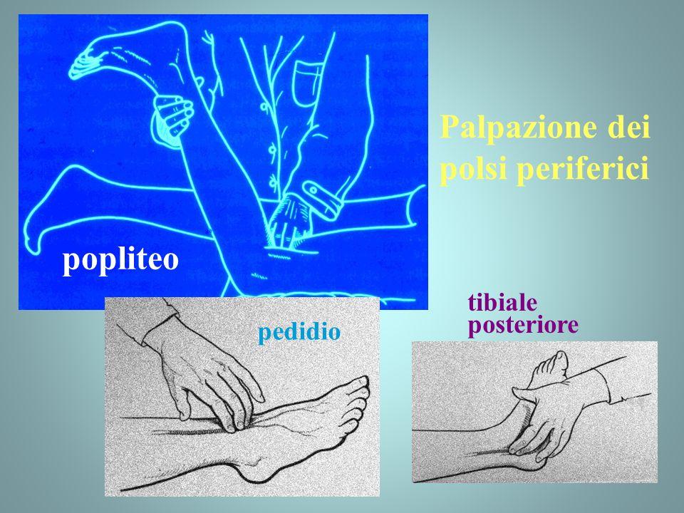 Palpazione dei polsi periferici popliteo pedidio tibiale posteriore