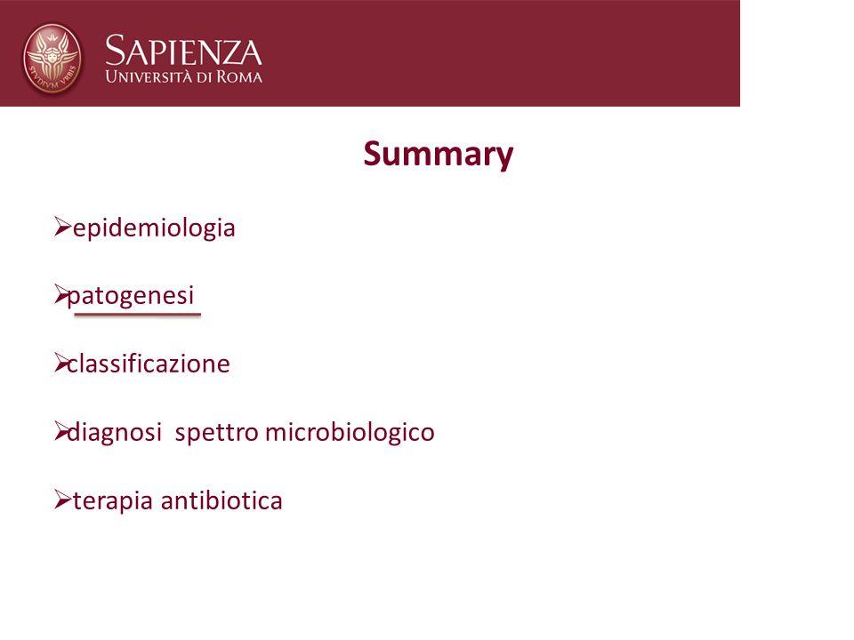 Summary epidemiologia patogenesi classificazione diagnosi spettro microbiologico terapia antibiotica