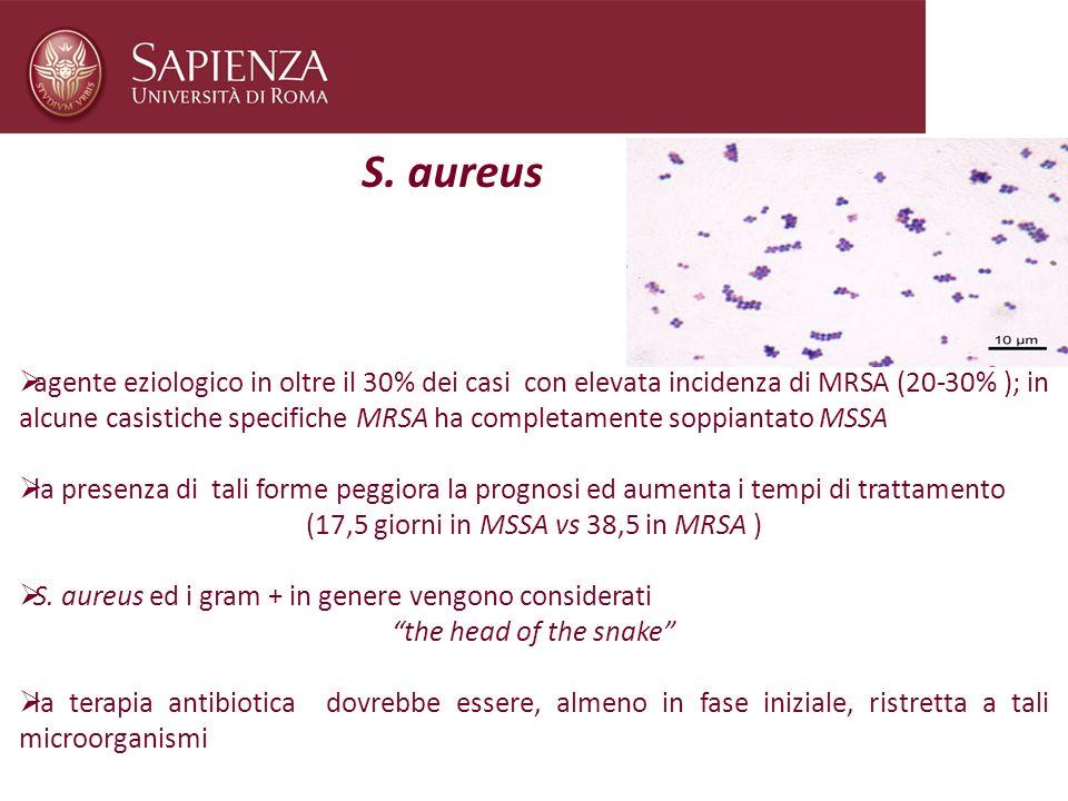 S. aureus agente eziologico in oltre il 30% dei casi con elevata incidenza di MRSA (20-30% ); in alcune casistiche specifiche MRSA ha completamente so