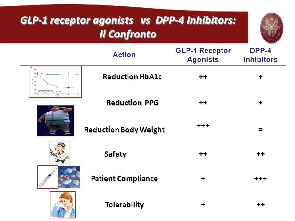 Action GLP-1 Receptor Agonists DPP-4 Inhibitors Reduction HbA1c Reduction HbA1c+++ Reduction PPG +++ Reduction Body Weight +++= Safety Safety++++ Pati
