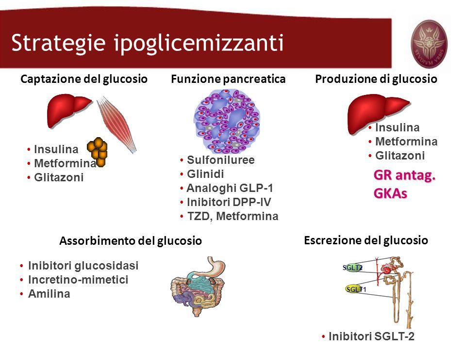 SGLT2 SGLT1 Funzione pancreaticaCaptazione del glucosio Assorbimento del glucosio Produzione di glucosio Escrezione del glucosio Insulina Metformina G