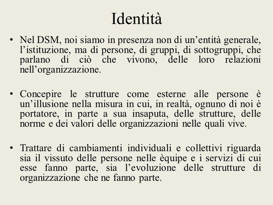 Identità Nel DSM, noi siamo in presenza non di unentità generale, listituzione, ma di persone, di gruppi, di sottogruppi, che parlano di ciò che vivono, delle loro relazioni nellorganizzazione.