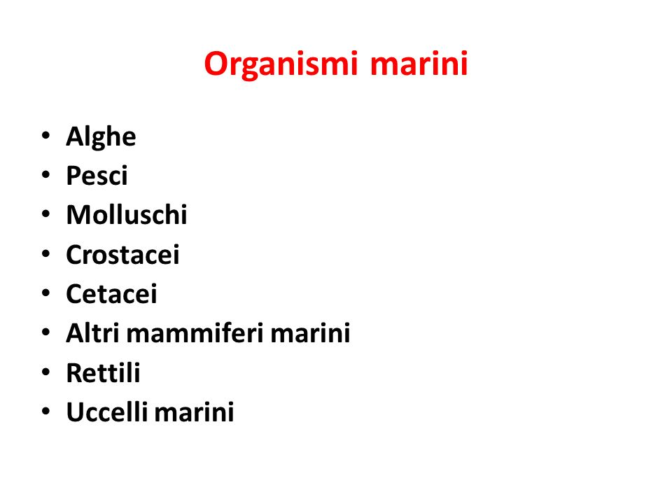 Organismi marini Alghe Pesci Molluschi Crostacei Cetacei Altri mammiferi marini Rettili Uccelli marini