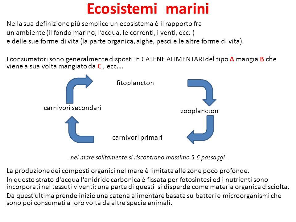 Ecosistemi marini Nella sua definizione più semplice un ecosistema è il rapporto fra un ambiente (il fondo marino, lacqua, le correnti, i venti, ecc.