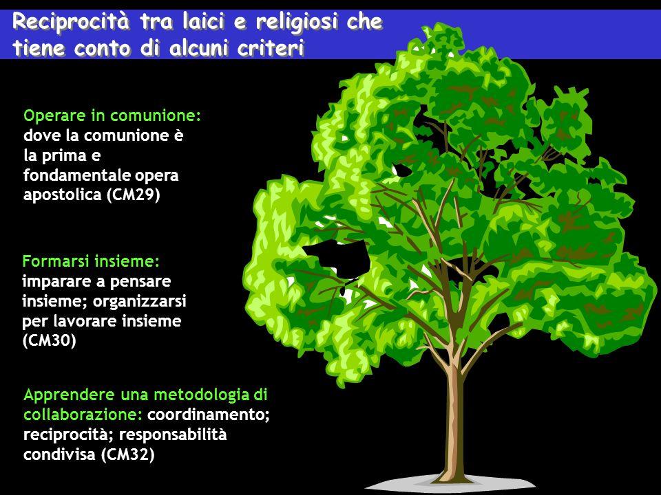 Reciprocità tra laici e religiosi che tiene conto di alcuni criteri Reciprocità tra laici e religiosi che tiene conto di alcuni criteri Operare in comunione: dove la comunione è la prima e fondamentale opera apostolica (CM29) Formarsi insieme: imparare a pensare insieme; organizzarsi per lavorare insieme (CM30) Apprendere una metodologia di collaborazione: coordinamento; reciprocità; responsabilità condivisa (CM32)