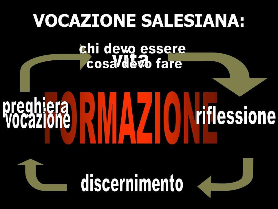 TIPO DI VITA APOSTOLICA Consiglio Locale CENTRO LOCALE Gruppo dei giovani Laboratorio M.Margherita Famiglie don Bosco