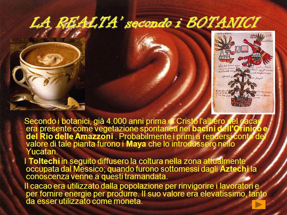 LA REALTA secondo i BOTANICI Secondo i botanici, già 4.000 anni prima di Cristo l'albero del cacao era presente come vegetazione spontanea nei bacini