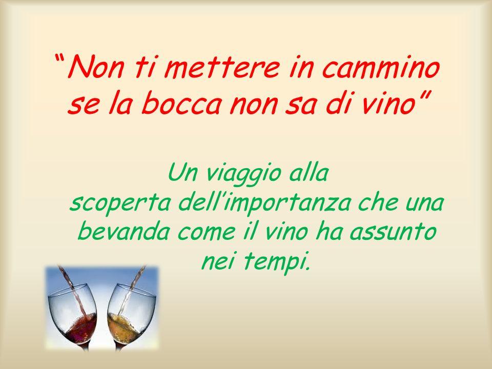 Non ti mettere in cammino se la bocca non sa di vino Un viaggio alla scoperta dellimportanza che una bevanda come il vino ha assunto nei tempi.