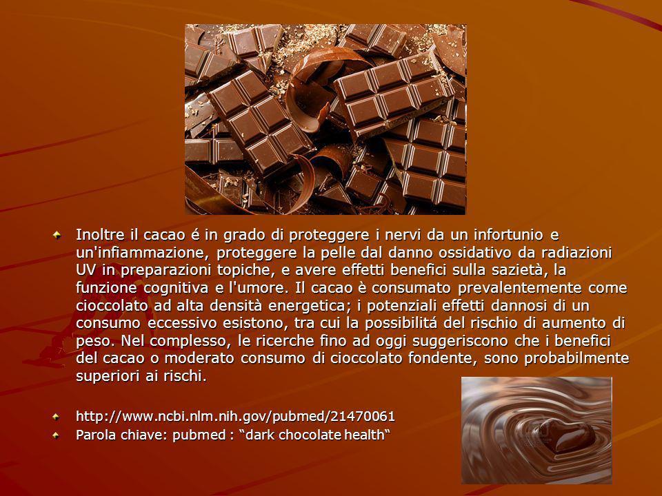 Inoltre il cacao é in grado di proteggere i nervi da un infortunio e un infiammazione, proteggere la pelle dal danno ossidativo da radiazioni UV in preparazioni topiche, e avere effetti benefici sulla sazietà, la funzione cognitiva e l umore.