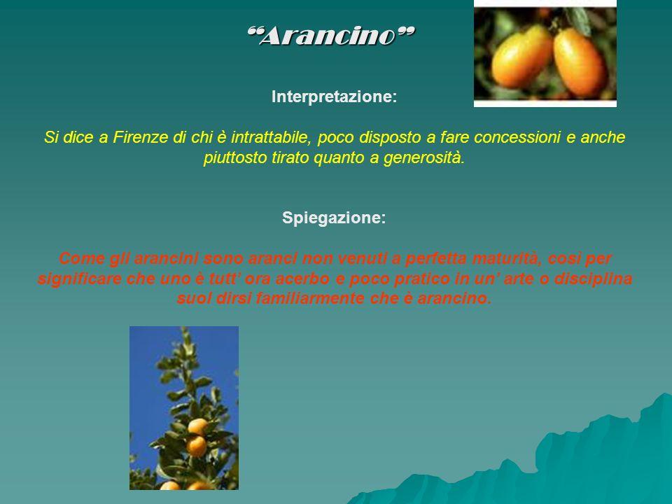 Arancino Interpretazione: Si dice a Firenze di chi è intrattabile, poco disposto a fare concessioni e anche piuttosto tirato quanto a generosità. Spie