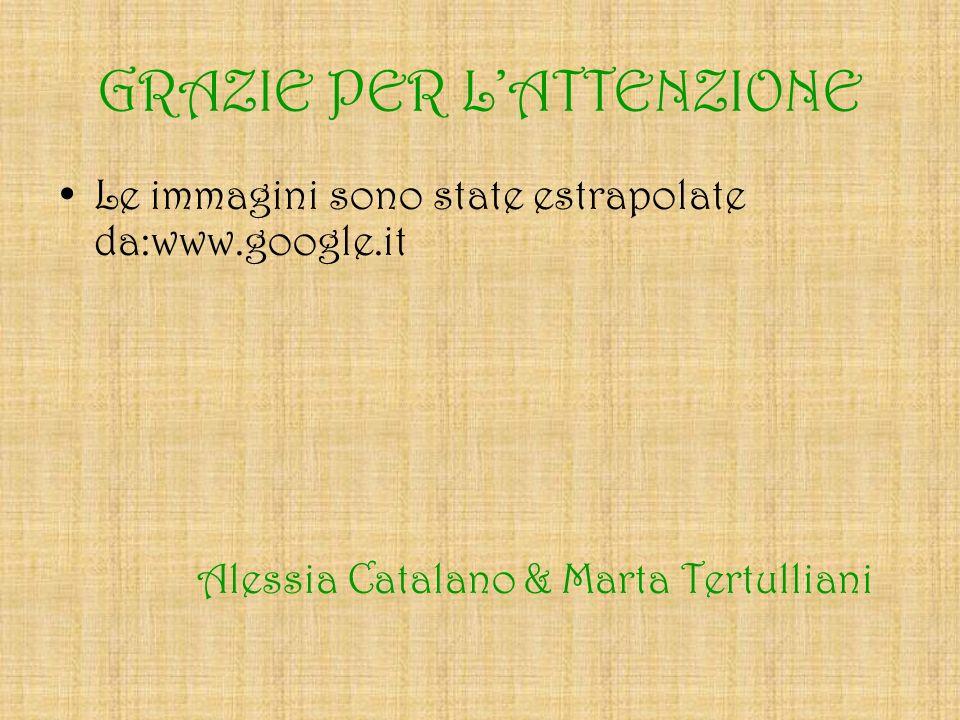 GRAZIE PER LATTENZIONE Le immagini sono state estrapolate da:www.google.it Alessia Catalano & Marta Tertulliani