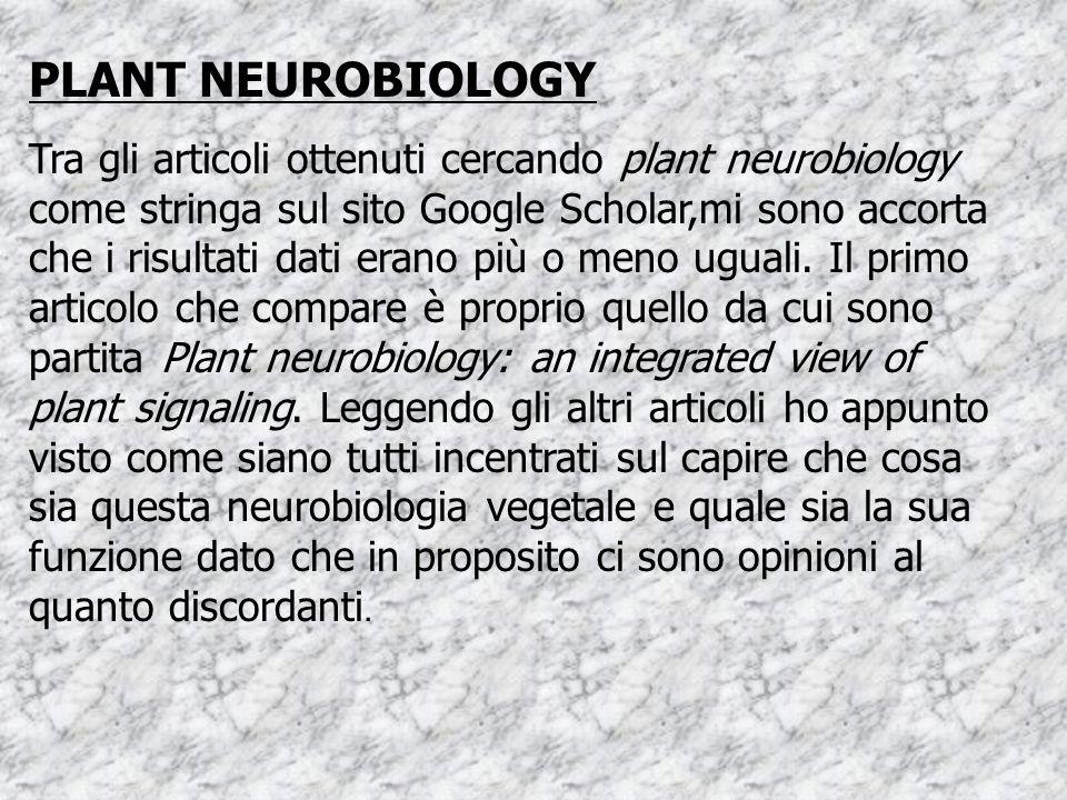 PLANT NEUROBIOLOGY Tra gli articoli ottenuti cercando plant neurobiology come stringa sul sito Google Scholar,mi sono accorta che i risultati dati erano più o meno uguali.