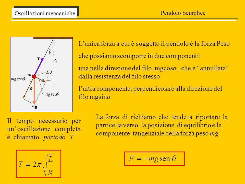 Il tempo necessario per un oscillazione completa è chiamato periodo T Oscillazioni meccaniche Pendolo Semplice La forza di richiamo che tende a riport