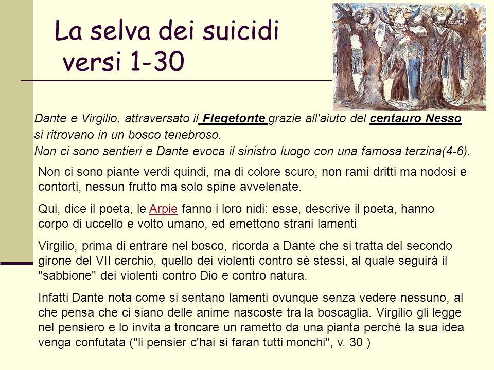 La selva dei suicidi versi 1-30 Flegetonte centauro Nesso Dante e Virgilio, attraversato il Flegetonte grazie all'aiuto del centauro Nesso si ritrovan