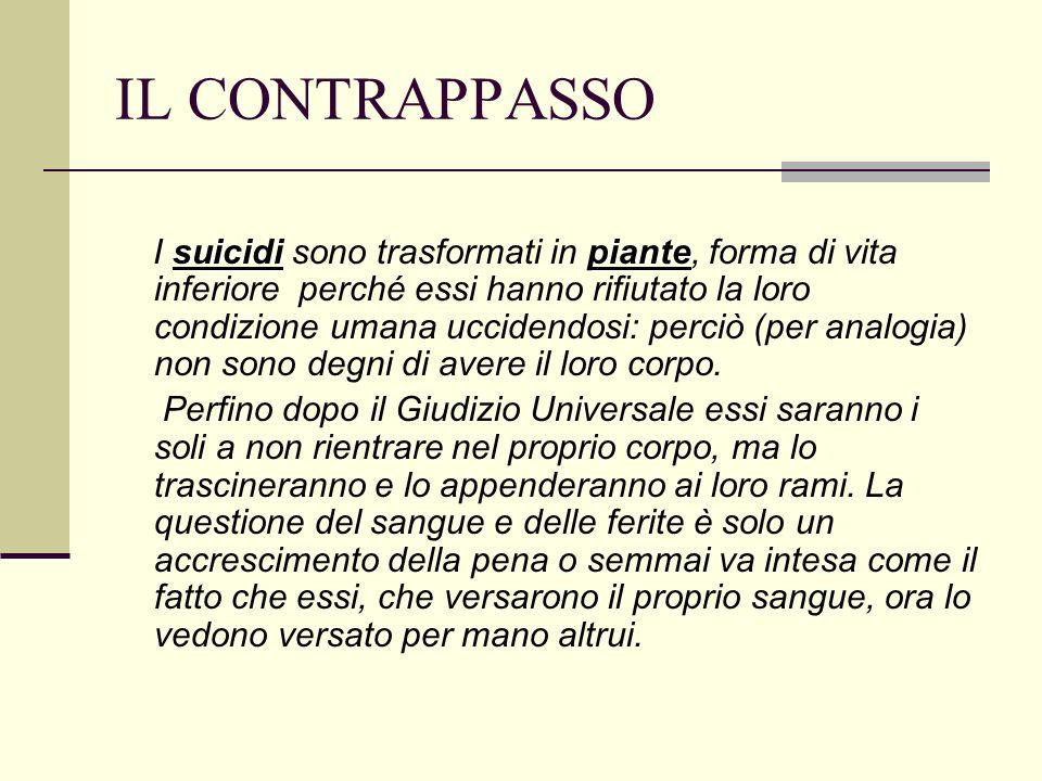 IL CONTRAPPASSO suicidipiante I suicidi sono trasformati in piante, forma di vita inferiore perché essi hanno rifiutato la loro condizione umana uccid