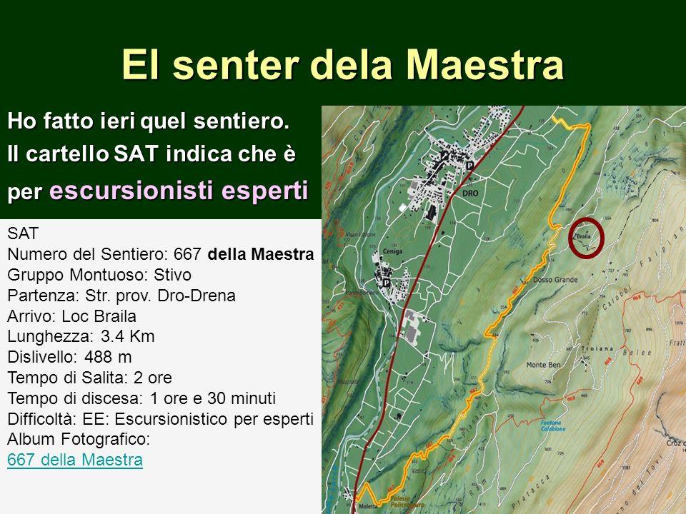 HOMEHOMECHI SIAMOCHI SIAMO La S.A.T.Italo MarchettiIl direttivo in caricaI direttivi passatiLa S.A.T.Italo MarchettiIl direttivo in caricaI direttivi