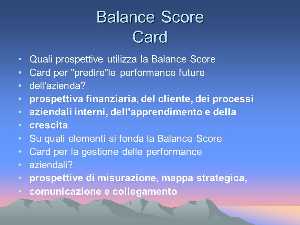 Balance Score Card Quali prospettive utilizza la Balance Score Card per predire le performance future dell azienda.