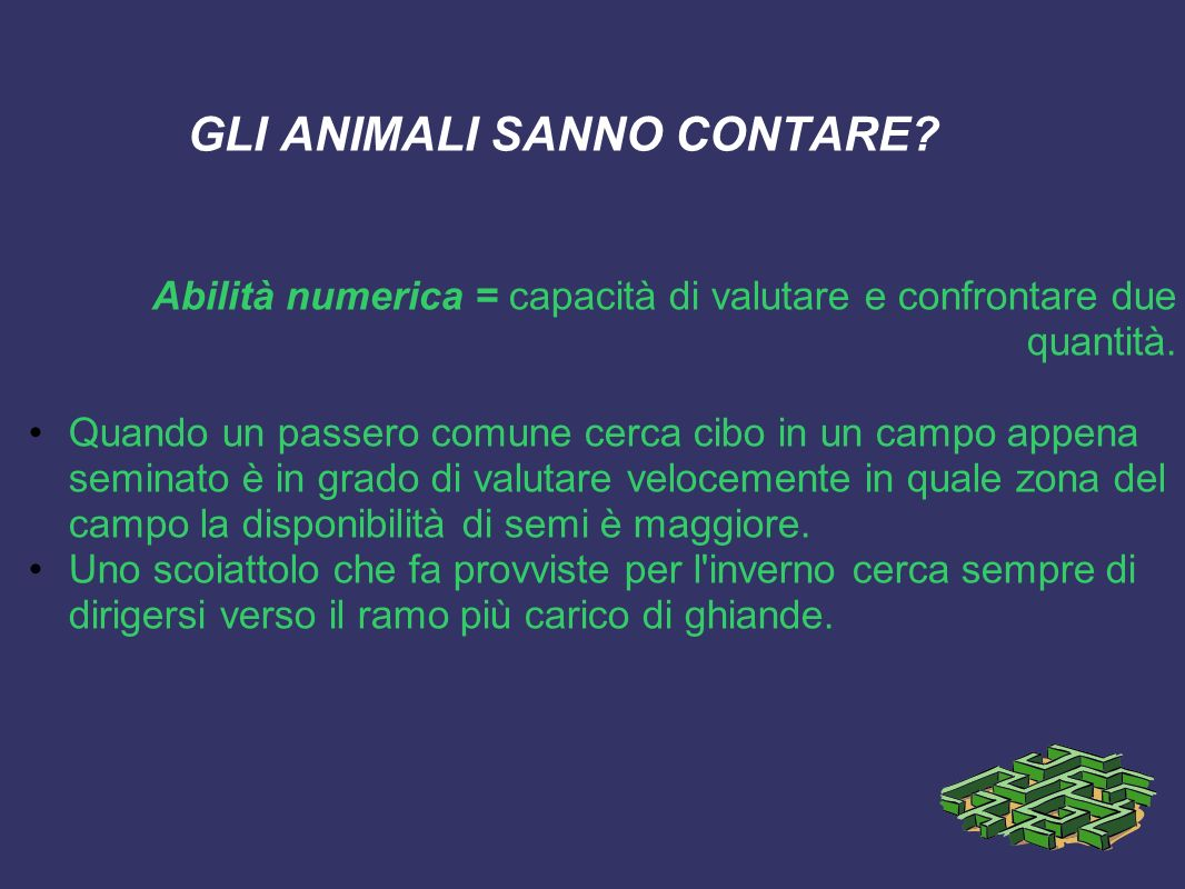 GLI ANIMALI SANNO CONTARE? Abilità numerica = capacità di valutare e confrontare due quantità. Quando un passero comune cerca cibo in un campo appena