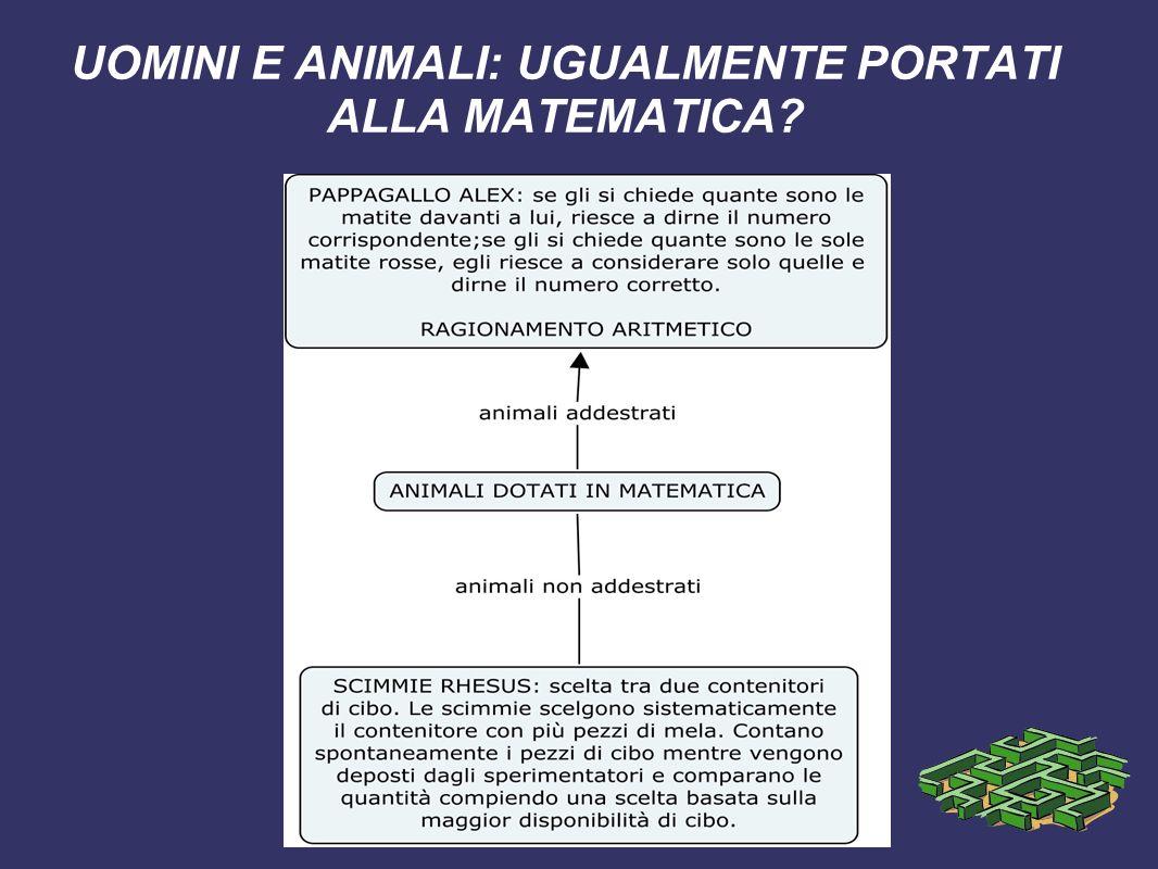 UOMINI E ANIMALI: UGUALMENTE PORTATI ALLA MATEMATICA?