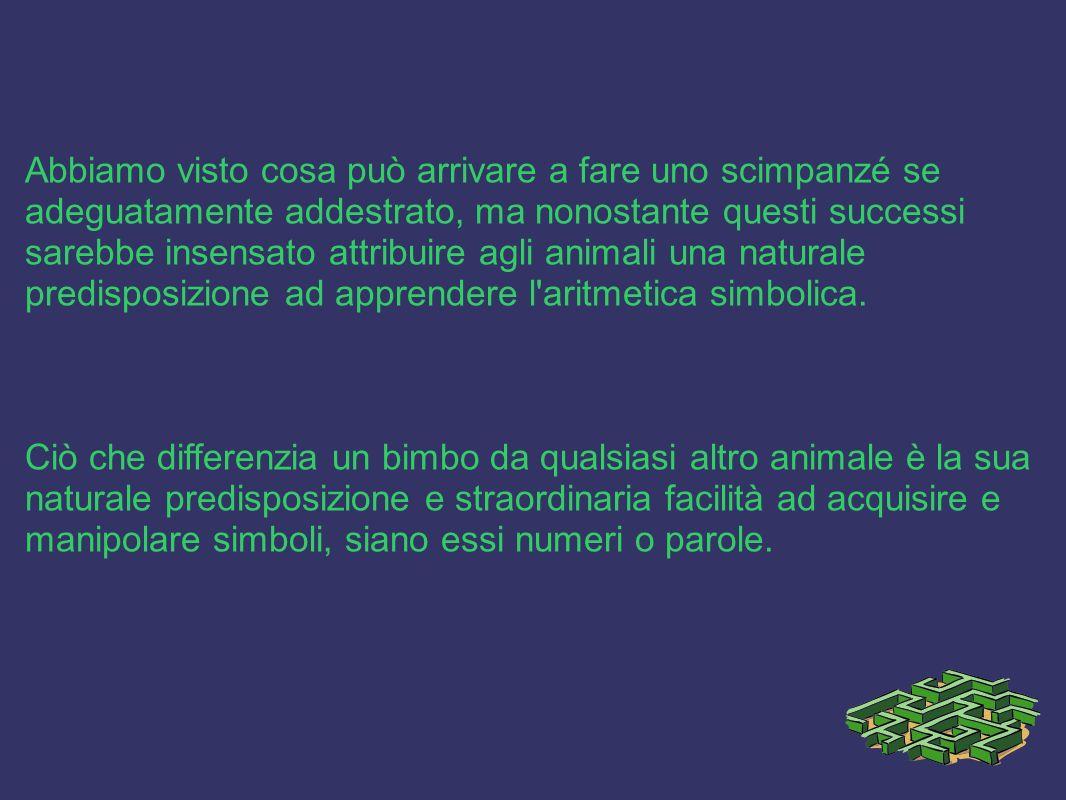 Abbiamo visto cosa può arrivare a fare uno scimpanzé se adeguatamente addestrato, ma nonostante questi successi sarebbe insensato attribuire agli animali una naturale predisposizione ad apprendere l aritmetica simbolica.