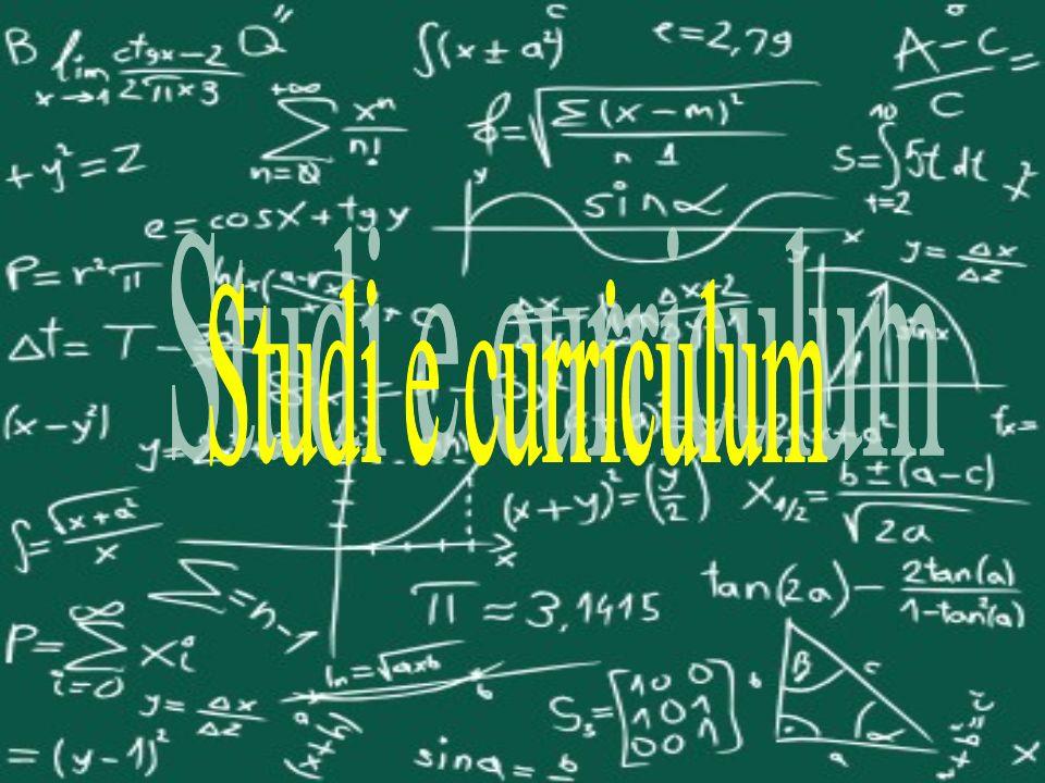 Che tipi di studi hai fatto? La ragioneria.